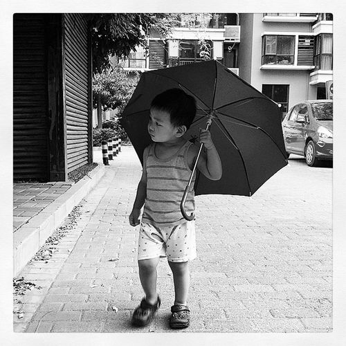 Umbrella Boy 壮壮