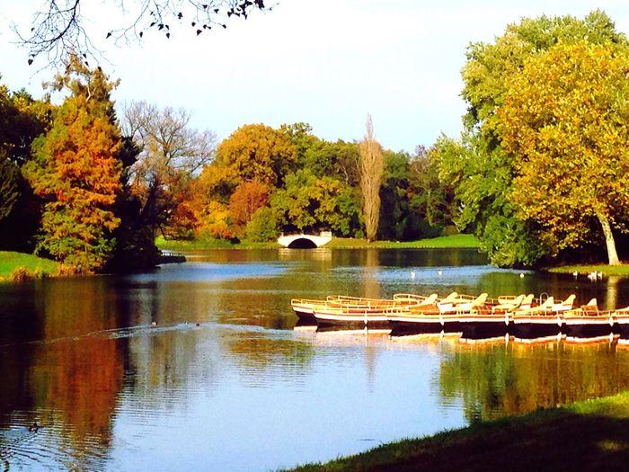 Architecture English Garden Lake View