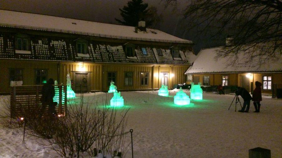 Isskulptur Sculptures Winter