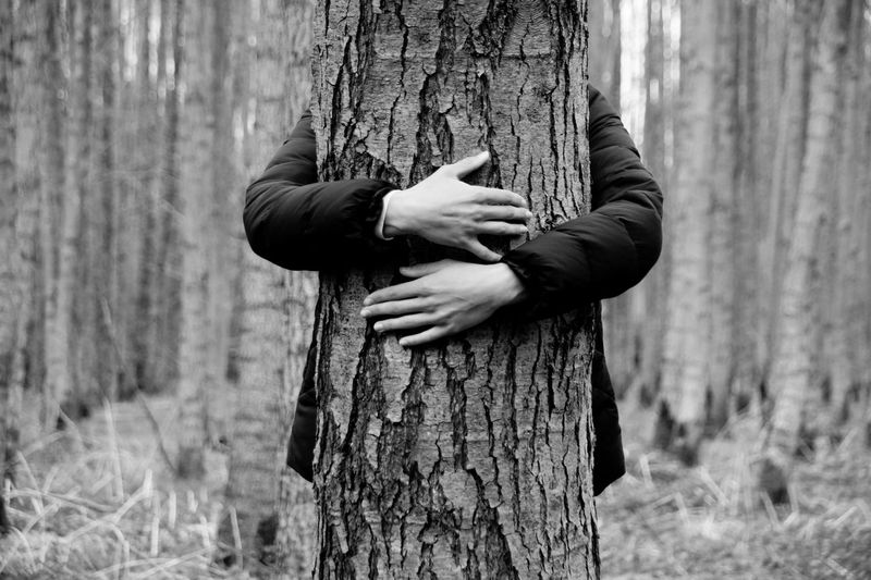 Adult Arm Around Day Embracing Forest Growth Hugging Hugging A Tree Hugging Trees Human Hand Lifestyles Men Nature One Person Outdoors People Real People Tree Tree Trunk Let's Go. Together. Black And White Friday