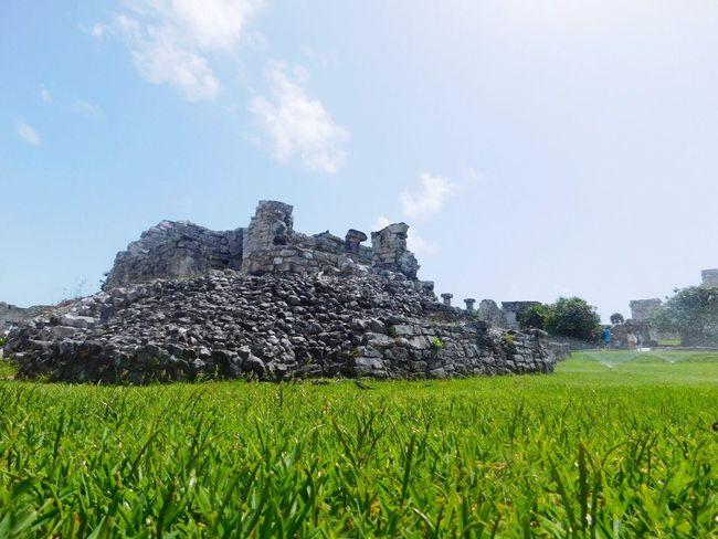 Mayan Ruins Explore Landscape Tranquility Growth Scenics Rural Scene Remote Outdoors Beautiful Followforfollow Eyemphotography Cool Pics Like Nikon Follow Me Beginnerphotographer EyeEm Best Shots EyeEm Gallery Ancient Civilizations
