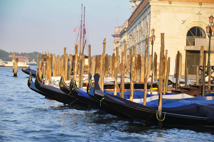 Gondeln Tourismus Tourism EyeEm Best Shots Venedig Venecia Gondeln Gondola Water Wasser Italy Italien Urlaub Holiday Italy Italien Wasser Water Urlaub Holiday Lagoon Lagune Venetian Transport Wasserweg Romantik Romantisch Romantic Verliebt Verliebte Paar Couple Wassertaxi Kanal Wasserweg Channel Waterway Romantisch Romantic Verliebt In Love Sommer Sommerzeit Summer Transportation Mode Of Transport Water Gondola - Traditional Boat Adventures In The City Water Vehicle Canal Boat Historic Gondola