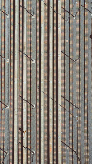 Full Frame Backgrounds Pattern No People Metal Day Close-up Textured  Built Structure Wood - Material Safety Protection Outdoors Security Wall - Building Feature Rusty Architecture Construction Site Barrier Repetition Iron - Metal Bamboo - Plant