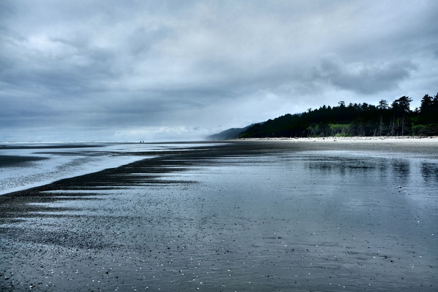 Pacific Northwest  Washington Washington Coast Sand Sandy Beach Beachphotography Beach Photography Beach Kalaloch Beach Kalaloch Olympic National Park Cloudy Mist The Great Outdoors - 2017 EyeEm Awards