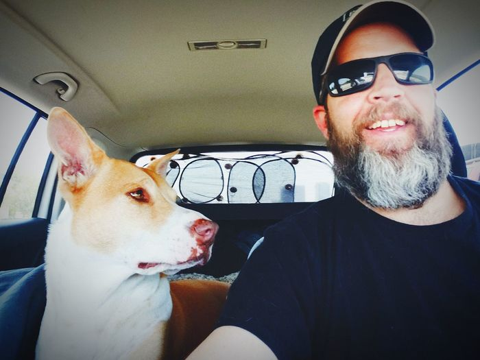 Gray Beard and his Wonder Dog Molly, we can be family right?? Selfie While In Car Selfie With Pet Pet Selfie Dog Selfie Beardstyle Beards And Dogs Selfie With Bear Dogs Dogs Of EyeEm Dog Love Man And Dog Young Women Car Interior Car Sitting Sunglasses Vehicle Interior Car Point Of View This Is Family