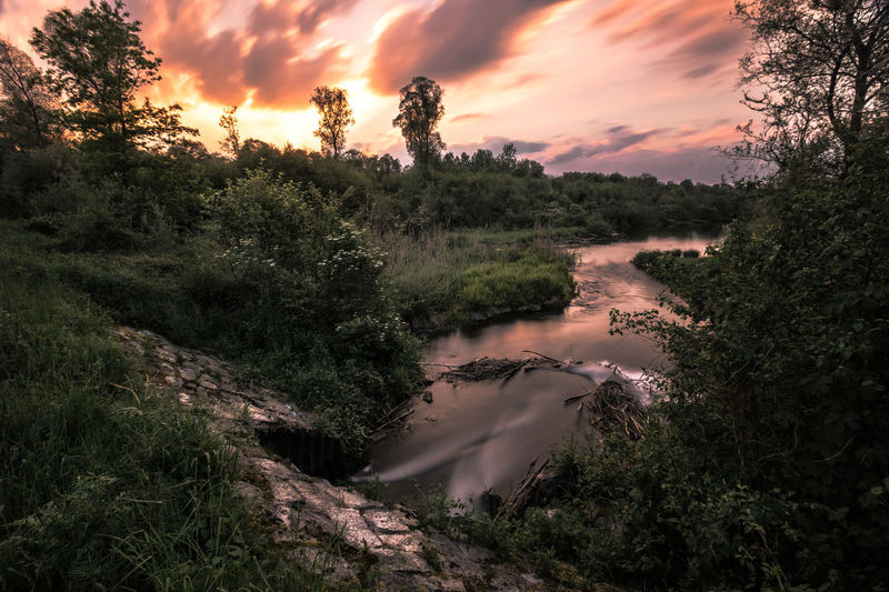 Flowing Nature Beauty In Nature Cloud - Sky Day Forest Green Growth Landscape Lightning Magic Nature No People Outdoors Purple River River View Scenics Sky Sunset Sunsets Tranquil Scene Tranquility Tree Water