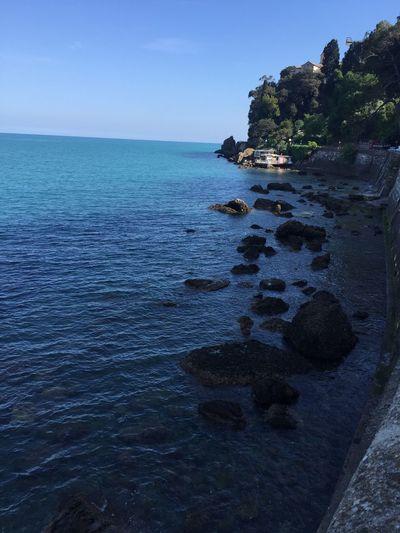 Portofino Seaside Sea Sea And Rocks IPhoneography Mobilephotography Mobilephoto Traveling Travel Photography Travel Italy Italy❤️ Italia Love Sea