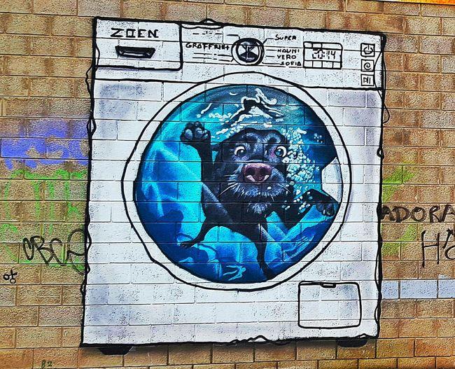 Graffitiart Grafitti Arteurbano Muralart Grafitiart Graffiti Arte Urbano  Graffiti Art Grafity Perro Doog Doogs Perros