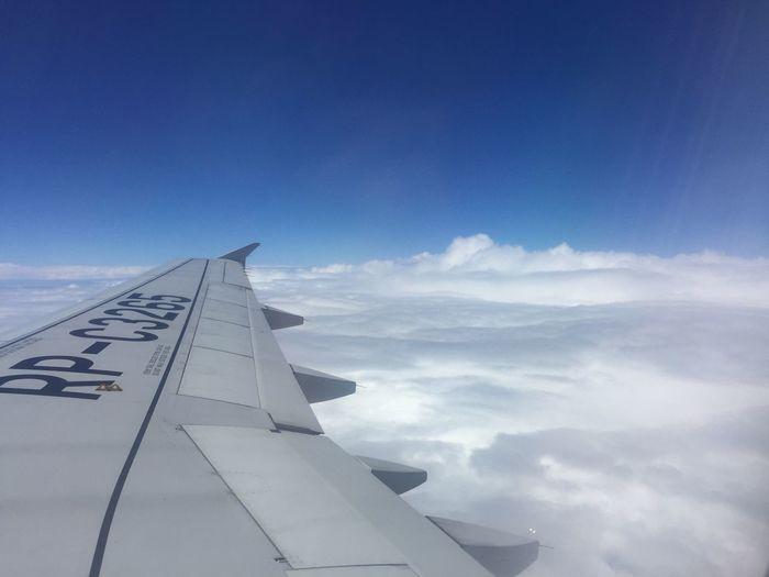 Airplane Sky No