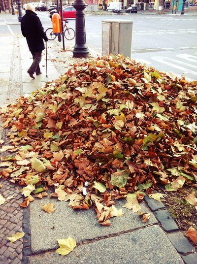 Herbstplanschbecken in Berlin Herbstplanschbecken