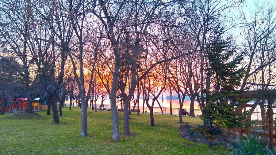 A Danube sunset