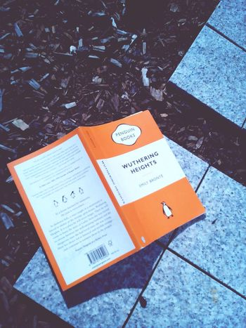 Currently reading...wuthering heights Reading A Book Relaxing Hanging Out My Book
