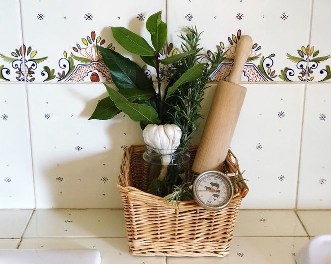 Herbs Kitchen Kitchen Utensil Nature Indoors  Flower Flowering Plant Container Basket Green Color