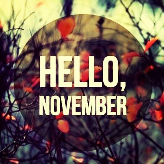 November Hello November