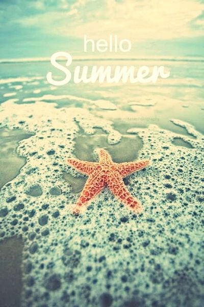 Hello Summer Enjoying Life Starfish  Full Of Colors Nature