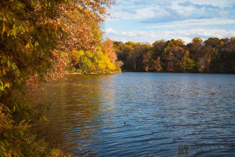 Fall Morning at Lake Elkhorn Columbia Maryland Landscape Maryland Lake Lake Elkhorn Fall Colors Autumn Natural Beauty Beauty Colors