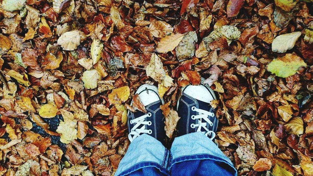 Shoe Low Section Human Leg Autumn Real People One Person Leaf Change Personal Perspective High Angle View Standing Human Body Part Lifestyles Jeans Day Canvas Shoe Directly Above Outdoors Men Women leaves falling ground autaumn