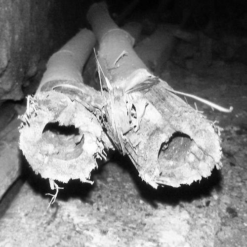 Bamboo Holes Verically Intersected instaart igdaily igaddict bestoftheday picoftheday jj_global jj_mobilephotography jj_forum jj_macro macropremier supermacro macrogram vscocam vscoindia vscogood india_igers samsunggrand2 jabalpur