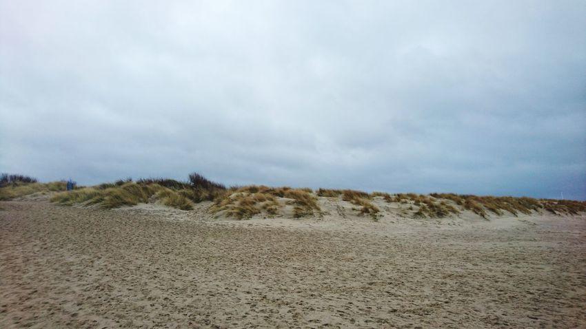 Dutch dunes in Zeeland Dunes Dunescape Zeeland❤️ Sea Water Zeeland  Holland Landscape Oosterschelde Sand Beach Nature Day Outdoors Sky No People