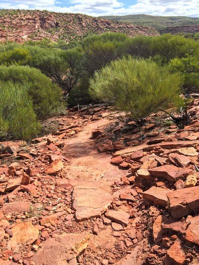 Hiking Path Down Kalbarri Gorge Rocky Stone Red Rock Nature Textures Layered Rock Colors Of Nature Nature Photography Nature Path Trail Kalbarri Australia Nature's Design Western Australia The Great Outdoors With Adobe Travel Photography Sandstone Landscape Geological The Great Outdoors - 2016 EyeEm Awards Hiking Connected With Nature Travel Destinations Land