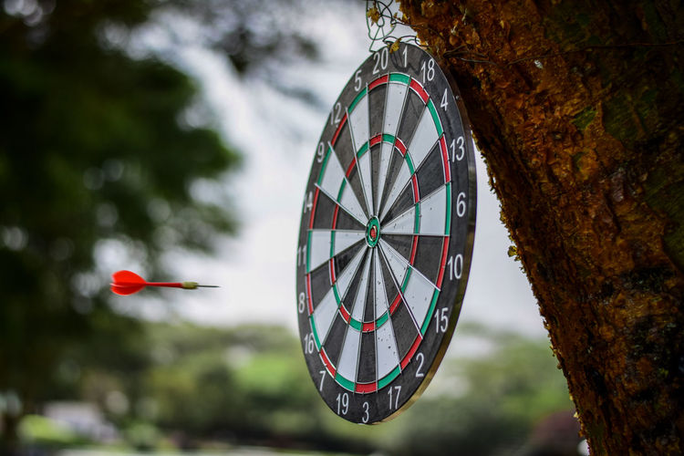 Dart series 2 Tree Focus On Foreground Day Nature No People Plant Outdoors Shape Circle Hanging Geometric Shape Red Close-up Pattern Transportation Mode Of Transportation Mid-air Travel Tree Trunk Metal Darts
