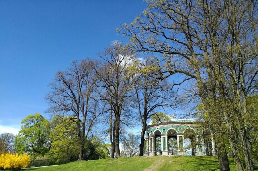 Gazebo At The Park Stockholm, Sweden At The Park