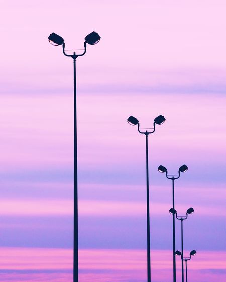 Street Light Lighting Equipment No People Sky Outdoors Low Angle View Illuminated Nature Bird Sunset Beauty In Nature Day
