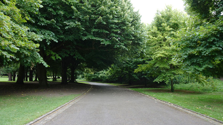 Irish National War Memorial Gardens Beauty In Nature Day Grass Green Green Color Growth Landscape Nature No People Outdoors Road Scenics Sky The Way Forward Tranquility Tree