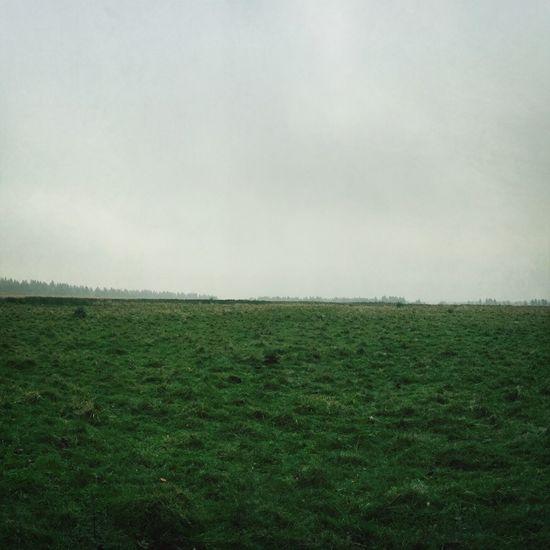 Hiking Foggy Day Nature