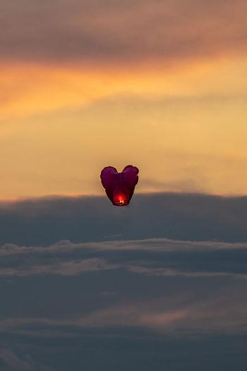 Heart shaped flower against sky at sunset