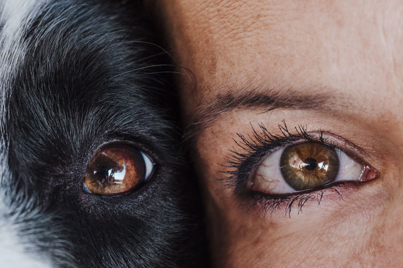 Close-up woman with dog