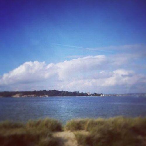 Brownseaisland Island Sea Poole Sandbanks