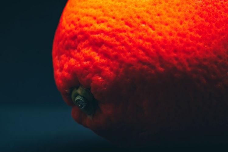 Close-up of orange jellyfish in sea