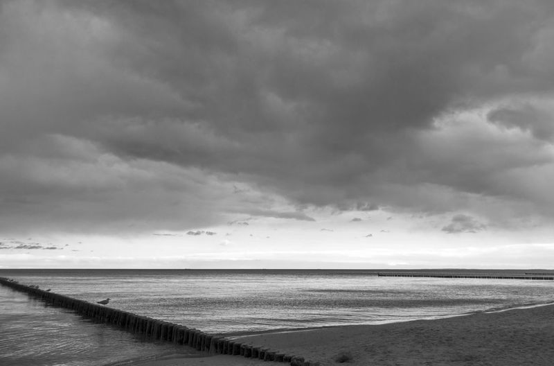 stormy sky Groyne Usedom Baltic Sea Cloud - Sky Sky Water Sea Scenics - Nature Horizon Beauty In Nature Beach Land Horizon Over Water Tranquil Scene Tranquility Nature Overcast Storm No People Non-urban Scene Day Outdoors Ominous Blackandwhite Cumulus Cloud Seascape Sand Dune Atmospheric Mood Meteorology