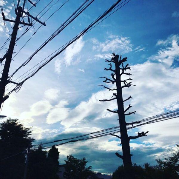 Good Morning! Clouds And Sky Summersky Sky Rainy Season Blue Sky Holiday♡ 蒸し暑さで、早くに目が醒める…。