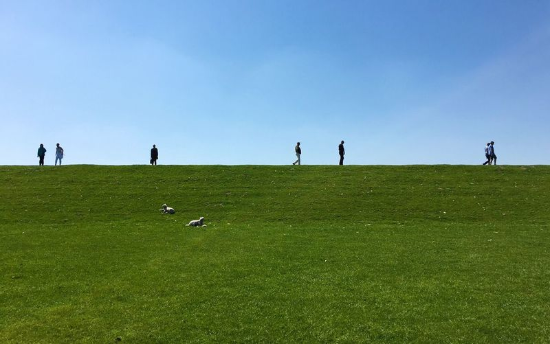 Walking the Horizon in Northern Germany Wide Open Space Minimalism People Shilouette Green Grass Dike Deich  IPhoneography The Great Outdoors - 2016 EyeEm Awards Feel The Journey On The Way Color Palette The Great Outdoors