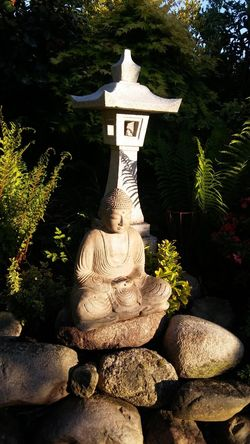 religion Sculpture Tree Statue Buddha A New Beginning Capture Tomorrow