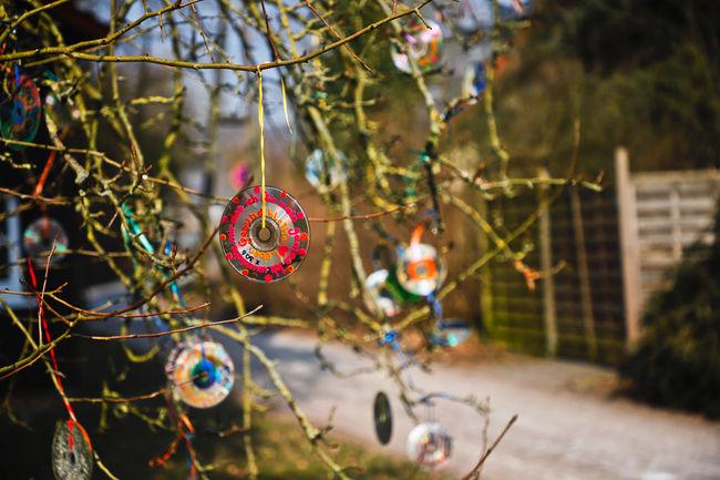 """""""Ich wünsche mir, dass ich mein ganzes Leben gesund bleibe""""- ich befinde mich zur Zeit in einer onkologischen Rehabilitationseinrichtung. Dieser Wunschbaum steht vor dem Kinderhaus. Die erkrankten Kinder schreiben ihre Wünsche auf eine Disc. Im Sonnenschein glitzert der ganze Baum. ...und ich wünsche, dass jeder einzelne Wunsch jedes Kindes erhört wird...❤️🙏 Faith Hanging Love Pain Shine Shiny Text Tree Tree Decorations Wishes Art Cd Colorful Decoration Disc Faithful Health Healthy Jewellery Outdoors Symbol Symbolic  Symbolism Wish Wish Tree"""