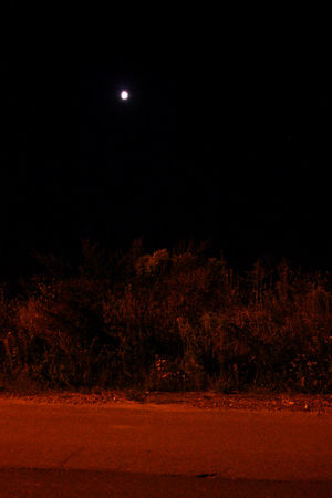 Canon 450D Dark Mars Moon Myslowice Night Red Planet Tranquility