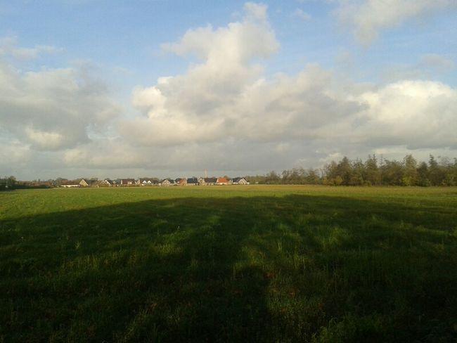 Von Altenberge nach Erika blicken - 13.11.13 - Haren_Ems