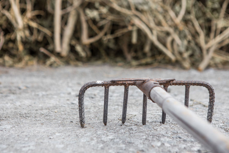 The rake is rusty with piles of dry branches on the floor in the farm Day No People Nature Metal Outdoors Close-up Selective Focus Rake Rusty Piles Of Wood Dry Branches Farm Land Cold Temperature Field Frozen Plant Absence Focus On Foreground Winter Snow Ice Grass Playground Surface Level