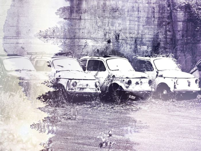 Italy🇮🇹 Graveyard Beauty Fiat 500 Car Transportation Land Vehicle Mode Of Transport Day Outdoors No People Family Cars Old But Awesome The Last Stop Artistic Expression Decaying Decayed Beauty Speciel Effect Filter Automobiles Beatiful Cars EyeEm Gallery Eye For Photography