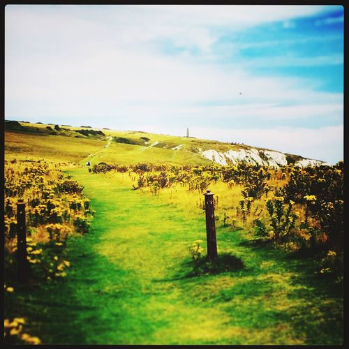 Yellow Pathway Clifftop Gatepost Bluesky Clouds Culverdown Isle Of Wight