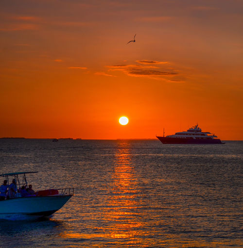 Key West Mallory Square Beauty In Nature Bird Boat Cloud - Sky Day Horizon Over Water Mode Of Transport Nature Nautical Vessel No People Orange Color Outdoors Scenics Sea Silhouette Sky Sun Sunset Transportation Water Waterfront