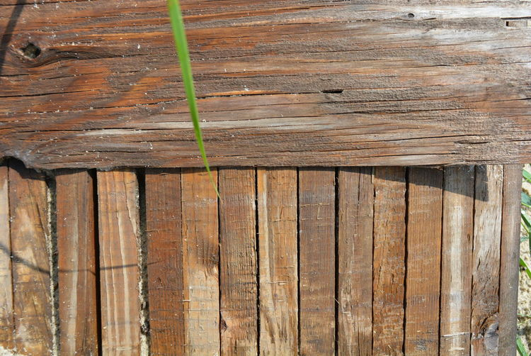 Construction wooden boards with old construction brown paint, green grass and sand after rain Construction Grass Architecture Backgrounds Barrier Boards Boardspiritmarseille Boundary Brown Built Structure Close-up Day Full Frame Grassy Nature No People Old Outdoors Pattern Plank Rough Security Textured  Weathered Wood Wood - Material Wooden