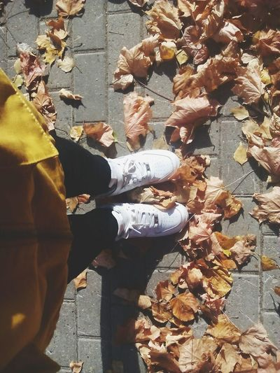 Любимый октябрь. First Eyeem Photo