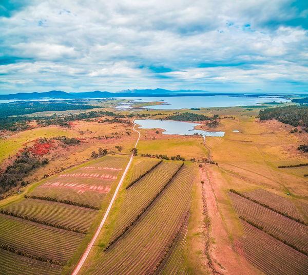 Aerial view of Devil's Corner winery. East coast, Apslawn, Tasmania, Australia Aerial Shot Australia Australian Beautiful Devil's Corner Drone  Aerial Aerial View Landscape Tasmania Vineyard Winery