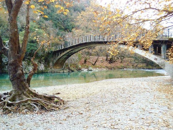 Old Bridge Greece Zagoroxoria,greece River View Forest