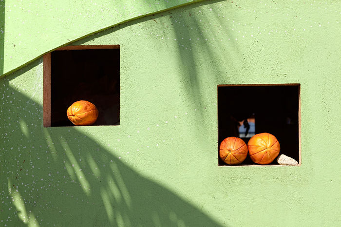 Green Square Windows Architecture Day Freshness Fruit No People Pumpkin Window Windows