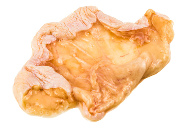 Saggy chicken skin with fats isolated in white background Chicken Skin Fats Brown Close-up Cut Out Food Food And Drink Freshness Indoors  Oily Raw Food Saggy Single Object Skin Still Life Studio Shot Unhealthy Eating Wellbeing White Background
